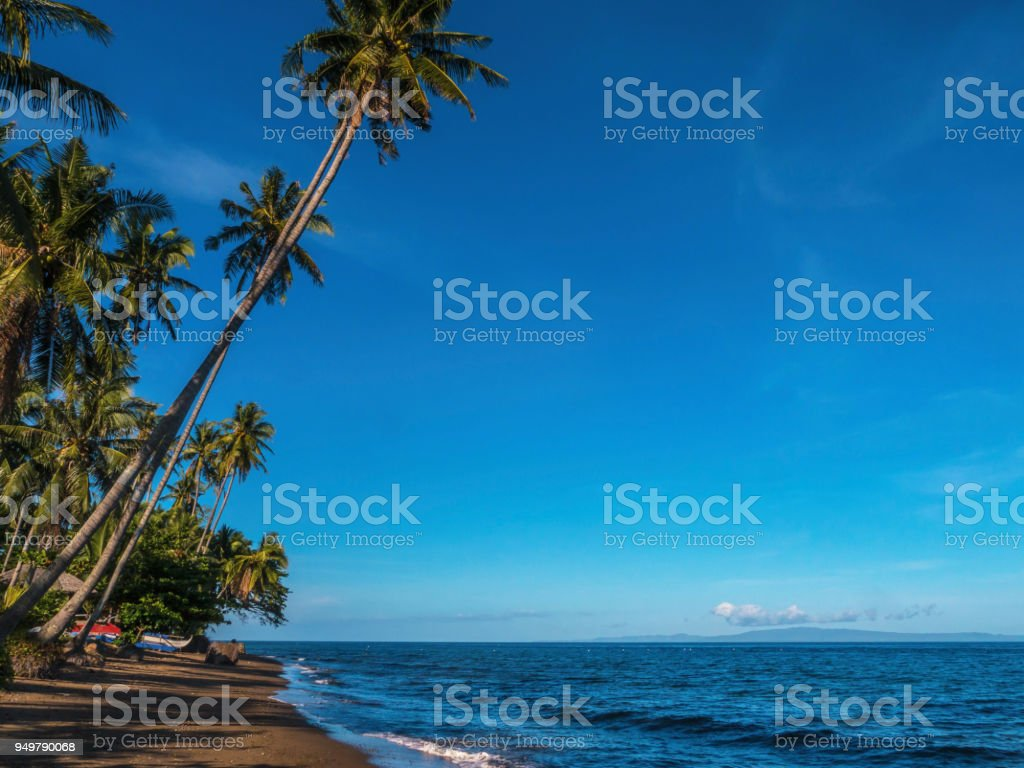 Horizontal view of a brown sand beach and calm sea on a tropical island in the Philippines, with tall coconut palm trees and a vibrant blue sky. Copy space in the wide blue sky area. Near the town of Dumaguete on Negros Island. stock photo