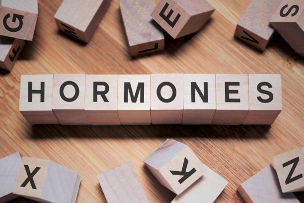 hormoner ord i träkub - hormon bildbanksfoton och bilder