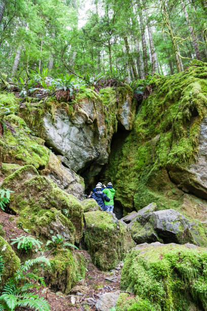 horne lake caves provincial park on vancouver island - provincial park stock photos and pictures