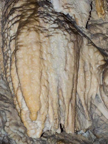 Horne Lake Caves Provincial Park stock photo