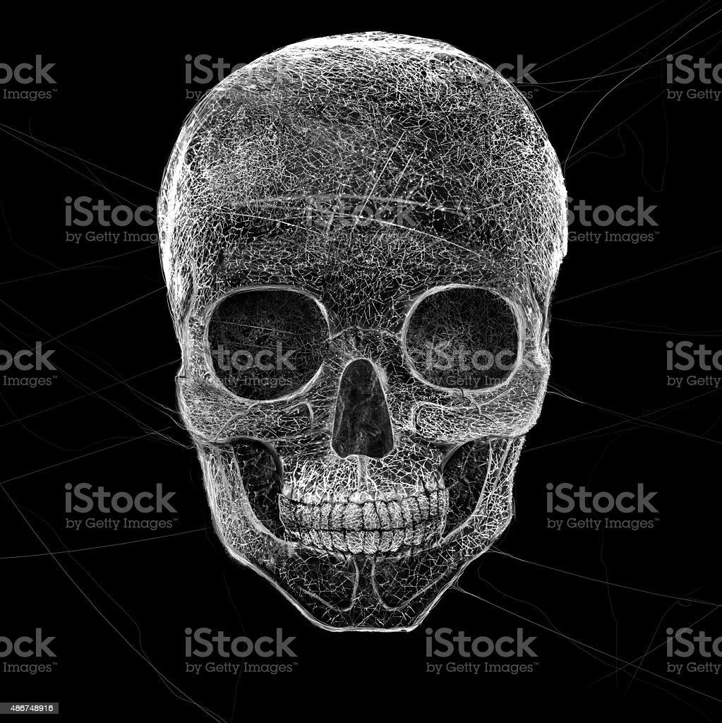 Horror Cobweb Skull stock photo