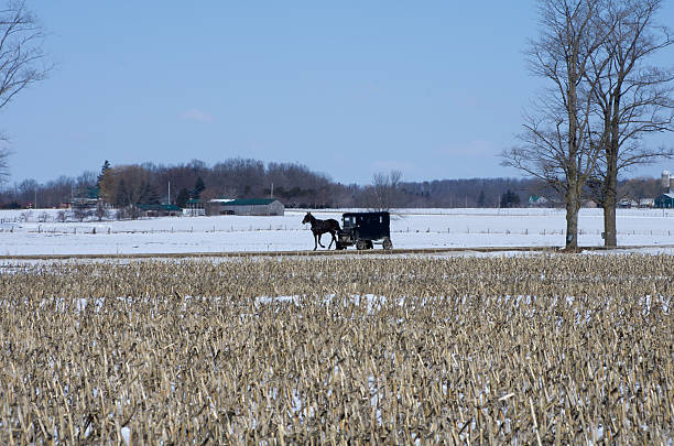 Horse and Buggy in Winter stock photo