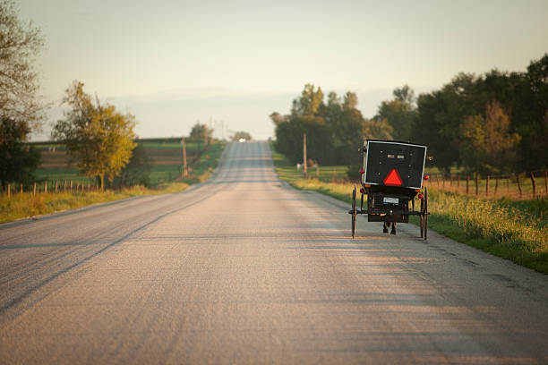 Horse and buggy on side of road at dawn stock photo