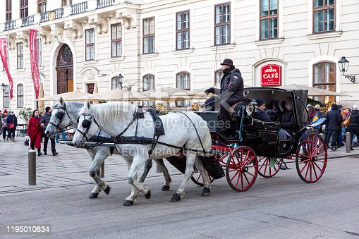 Vienna, Austria - 14 December, 2019: Color image depicting two white horses waiting to embark on a carriage ride for tourists in central Vienna, Austria - the capital city of the country. In the background we can see tourists exploring the city and its elegant old architecture.