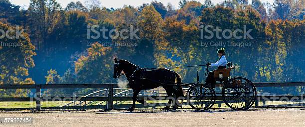 Horse and carriage rider during event picture id579227454?b=1&k=6&m=579227454&s=612x612&h=adcssygazmemn i72pvgfcg uctqjeoc udvuk nvag=