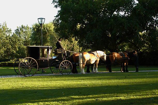 reiten pferd und kutsche - dalarna pferd stock-fotos und bilder