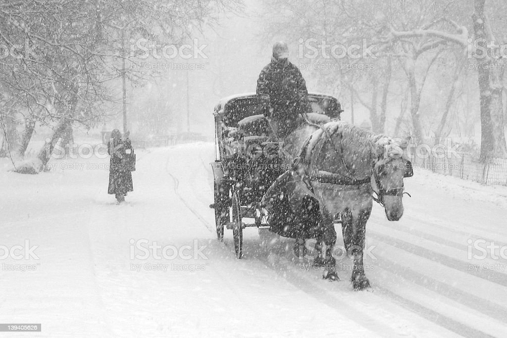 Horse and cart in the middle of a snowstorm stock photo