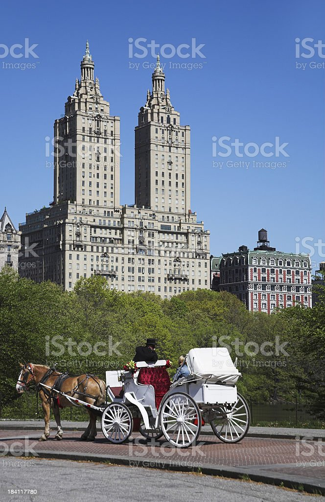 horse and driver royalty-free stock photo