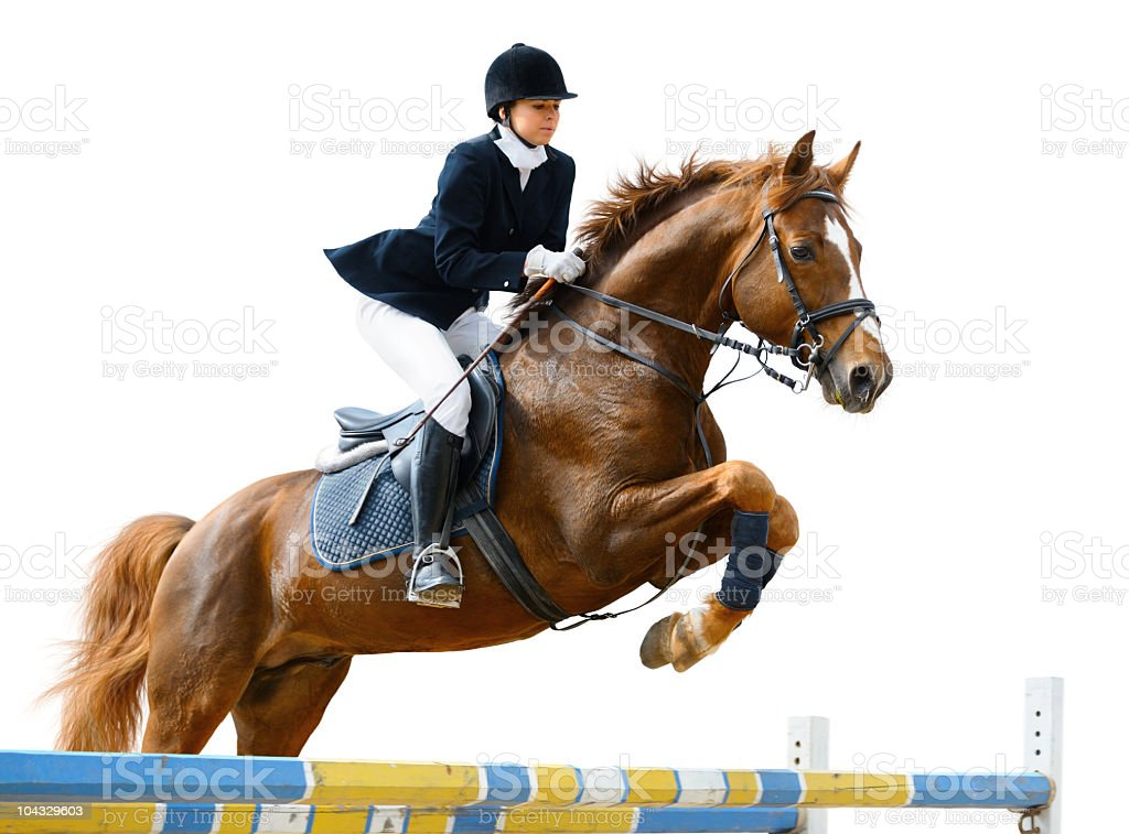 Horse and jockey jumping over blue and yellow fence stock photo