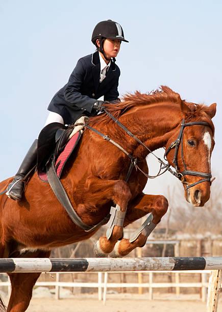 Pferd und jockey springt – Foto