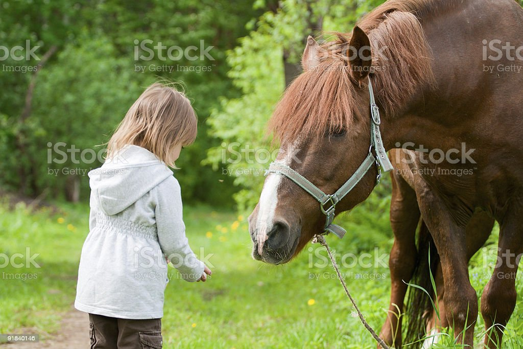 Horse and little girl. royalty-free stock photo