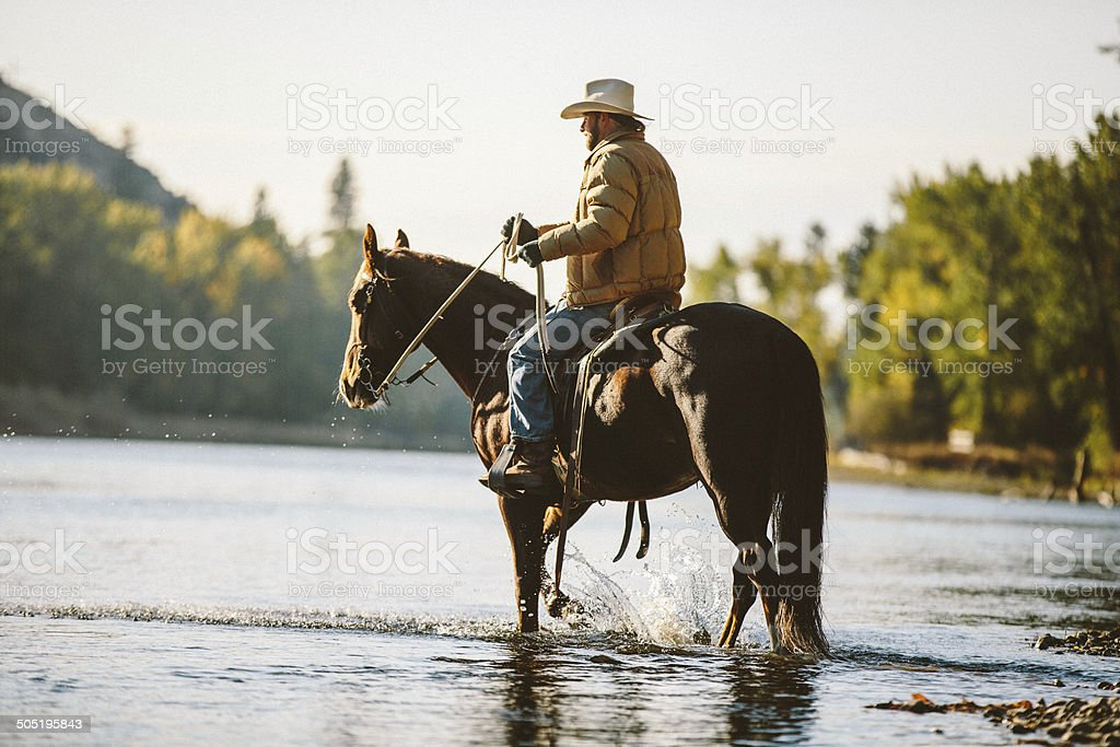 Horse and male rider wade in water along river bank stock photo