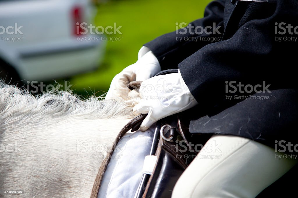horse and rider at competition royalty-free stock photo