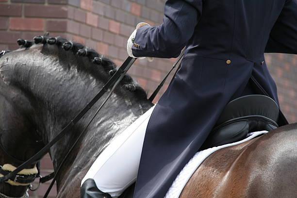 cavalier et cheval de dressage équestre concurrence - dressage photos et images de collection