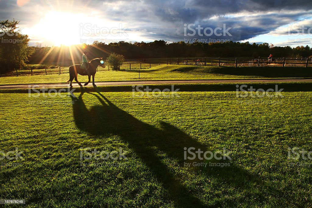 Horse and Rider in Sunset - Royalty-free Agricultural Field Stock Photo