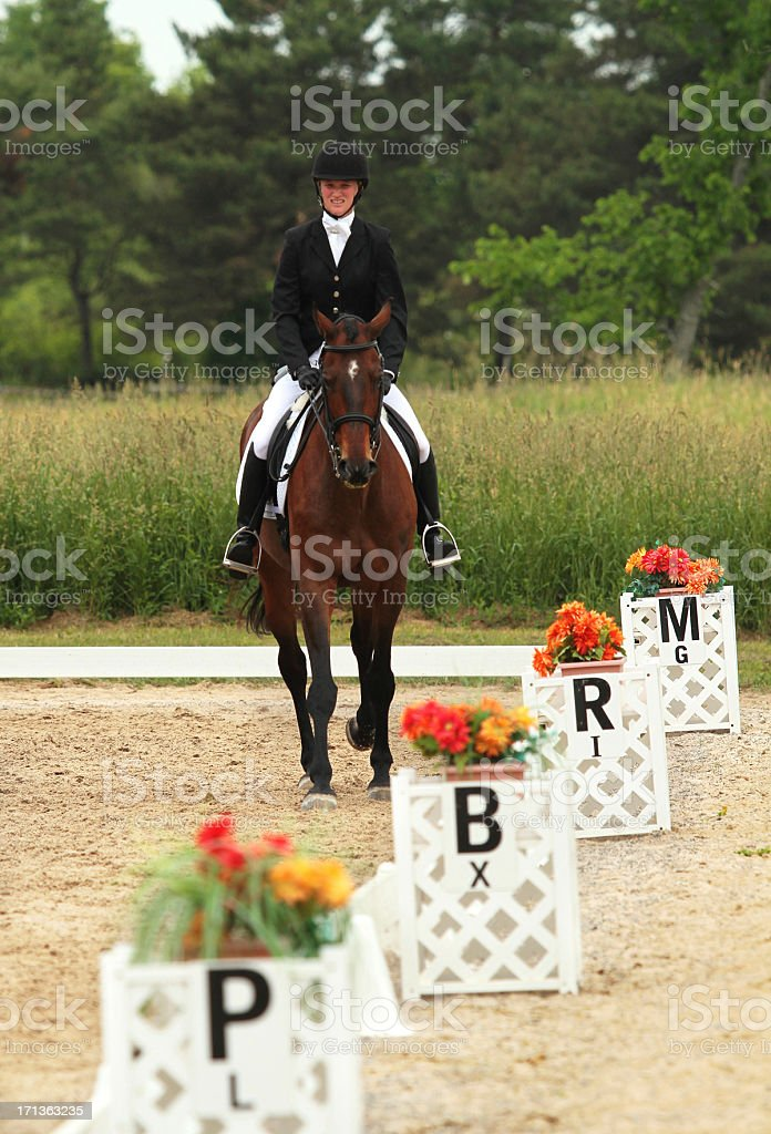 Horse and Rider In the Ring at Dressage Show royalty-free stock photo