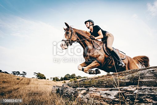 Low angle view of young woman skilfully riding her horse and practising jumping over some old telegraph poles, laid horizontally…. Photographed on the island of Møn in Denmark, colour, horizontal with some copy space. She is riding a tan coloured Arabian horse and she is wearing; a dark t-shirt, riding trousers, riding boots and a protective helmet.