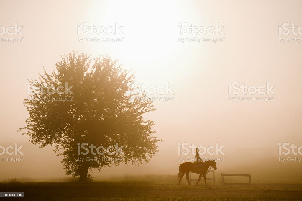 Horse and Rider on a Foggy Morning stock photo
