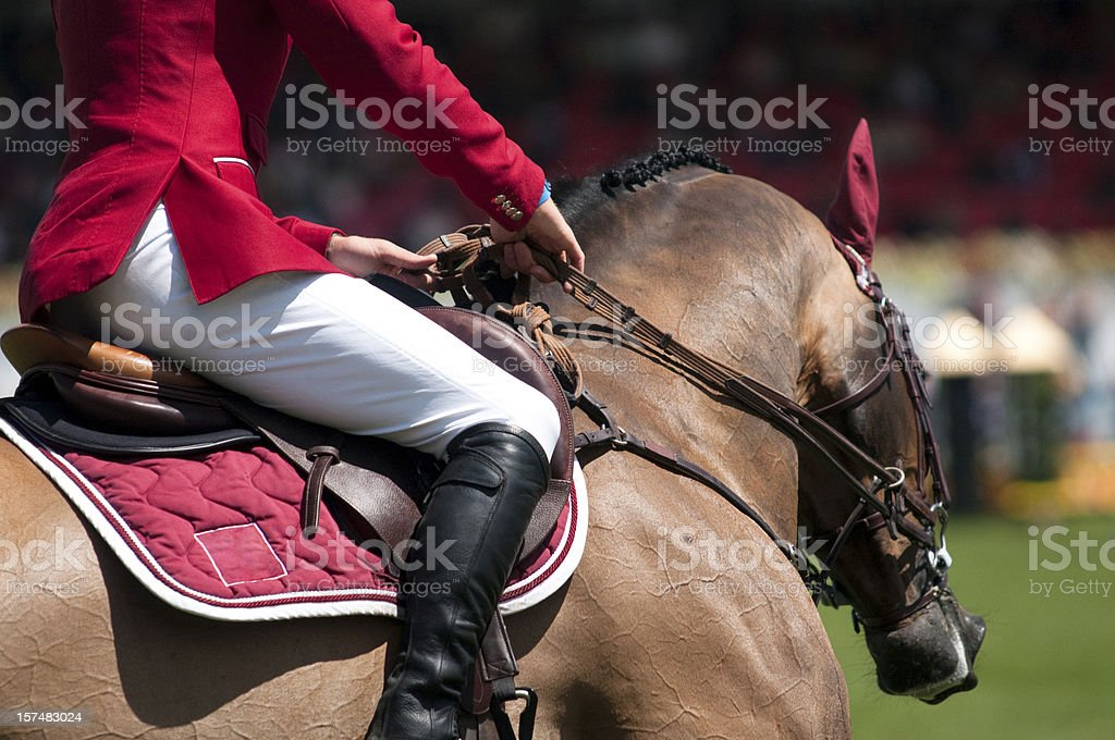 horse and rider on equestrian event stock photo