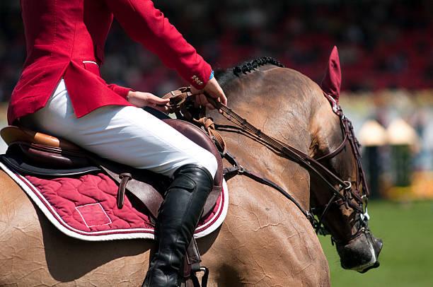 horse and rider on equestrian event - hästhoppning bildbanksfoton och bilder