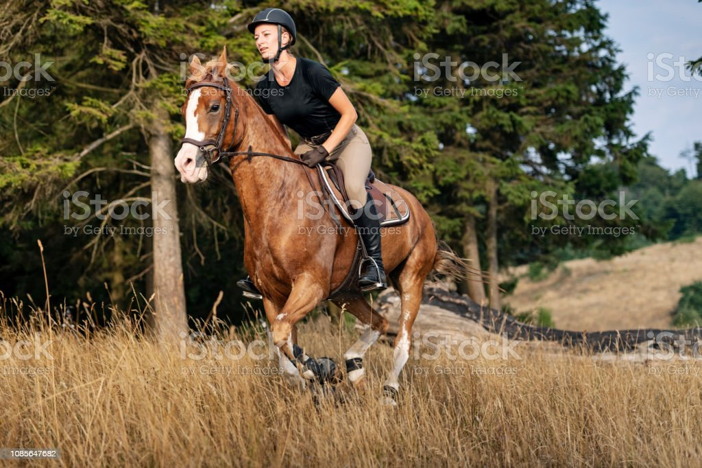 Horse And Rider Out For A Gallop Stock Photo Download Image Now Istock