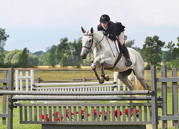 horse and rider over hunter jump - hästhoppning bildbanksfoton och bilder