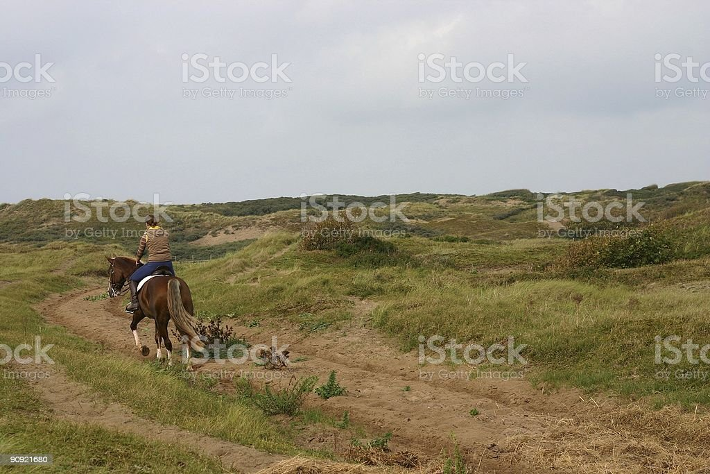 Horse and rider royalty-free stock photo