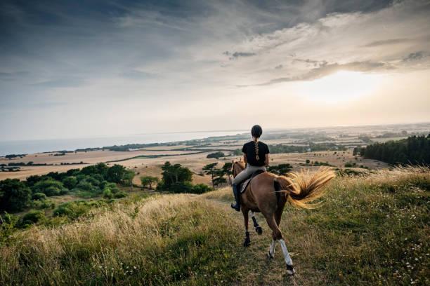 Horse and rider riding off into the sunset over mn in denmark picture id1066533346?b=1&k=6&m=1066533346&s=612x612&w=0&h=i7u8n89q2u9b1wrvytkhdx    ap vlif9b0gmk3uzw=