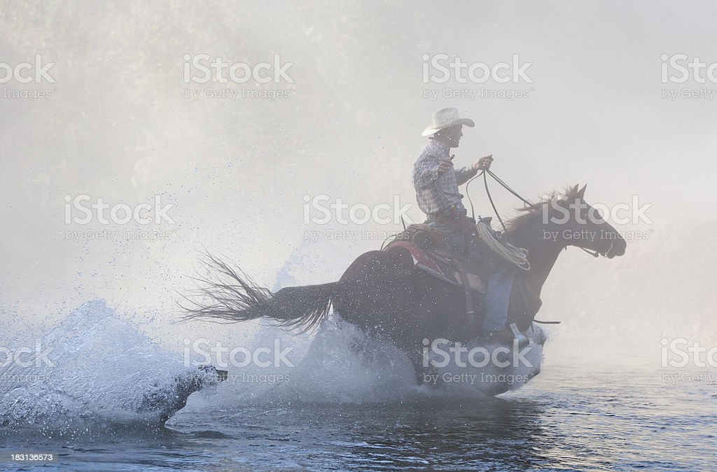 Horse and rider splash through creek with dog in pursuit stock photo