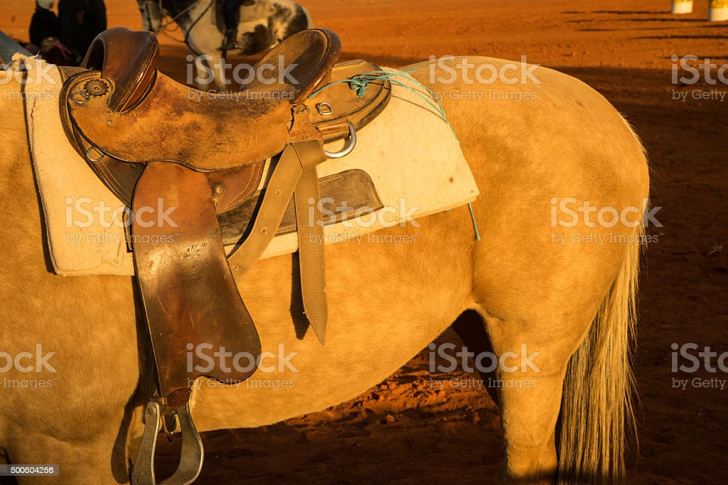 horse and saddle ready to ride stock photo