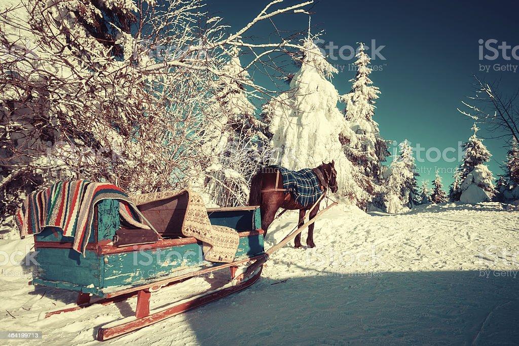 Horse and sleigh in the Ukrainian Carpathians stock photo