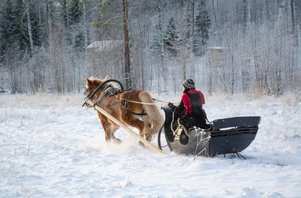 Horse and sleigh picture id862405220?b=1&k=6&m=862405220&s=612x612&w=0&h=9lwyd3tjope3 fjuivs47obehorscfaxphl2mlywp5c=