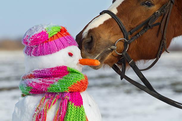 Caballo y muñeco de nieve - foto de stock