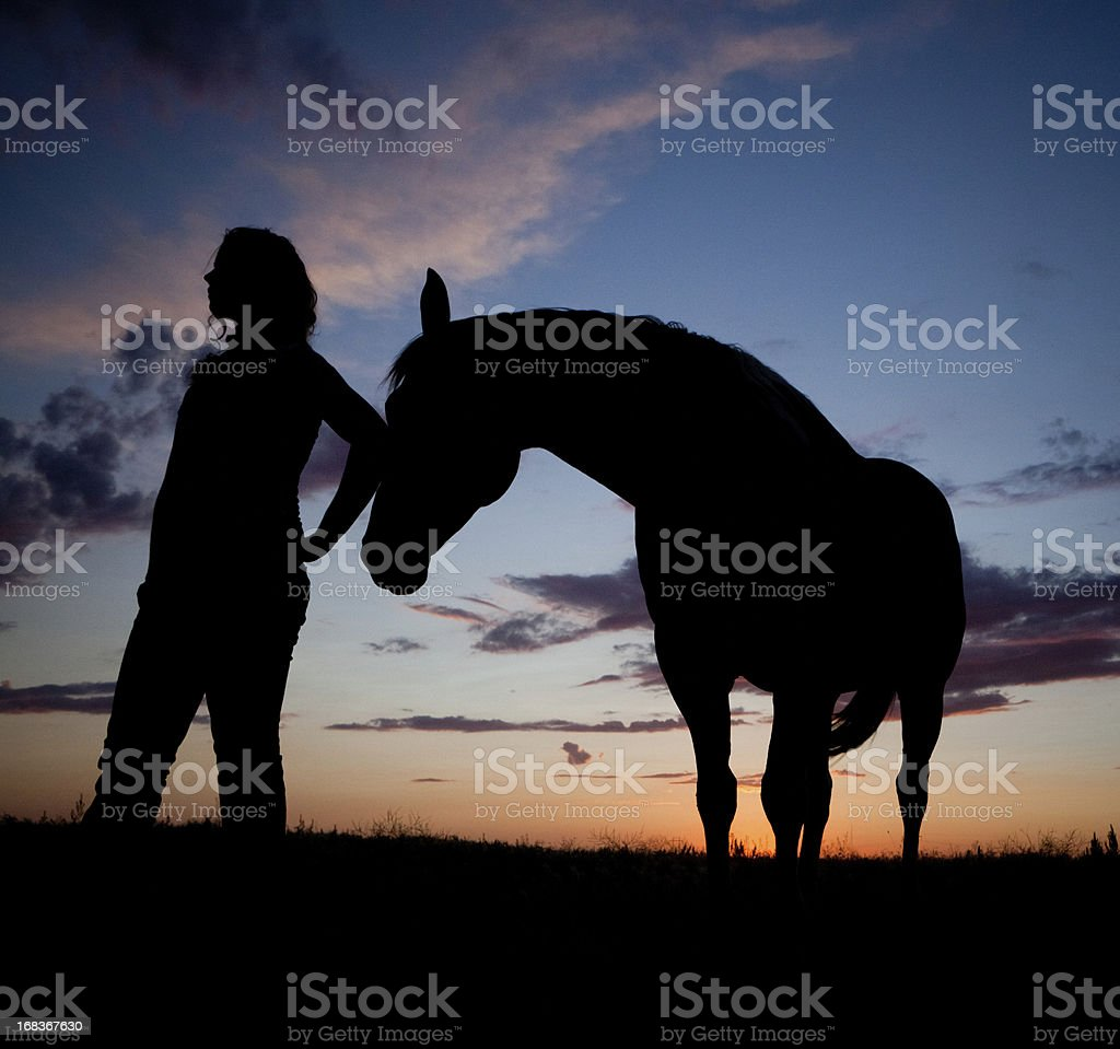 Horse And Woman Silhouette stock photo