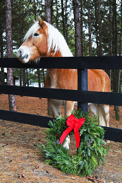 Horse And Wreath In Country Christmas Stock Photo