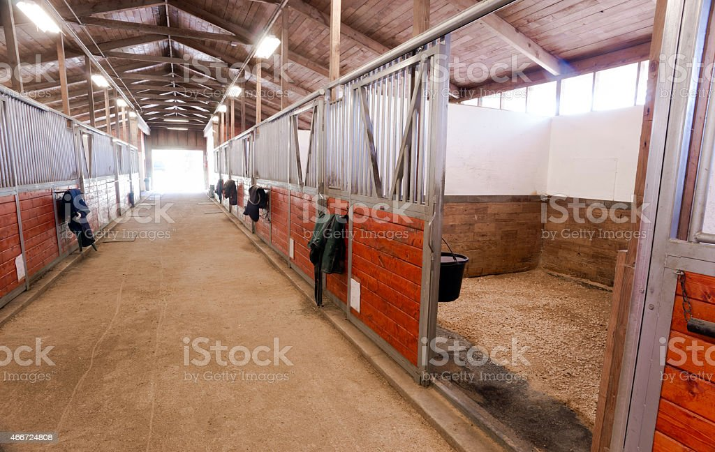 Horse Barn Animal Sport Paddock Equestrian Ranch Racing Stable stock photo