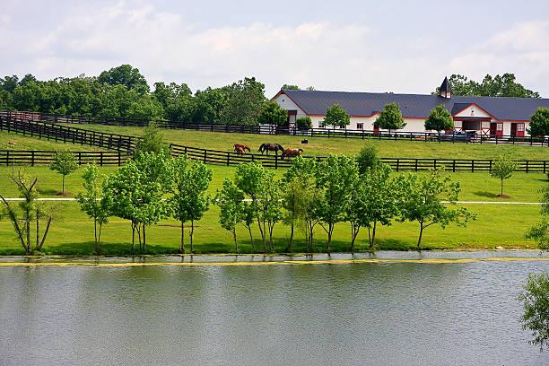 Horse Barn in Kentucky