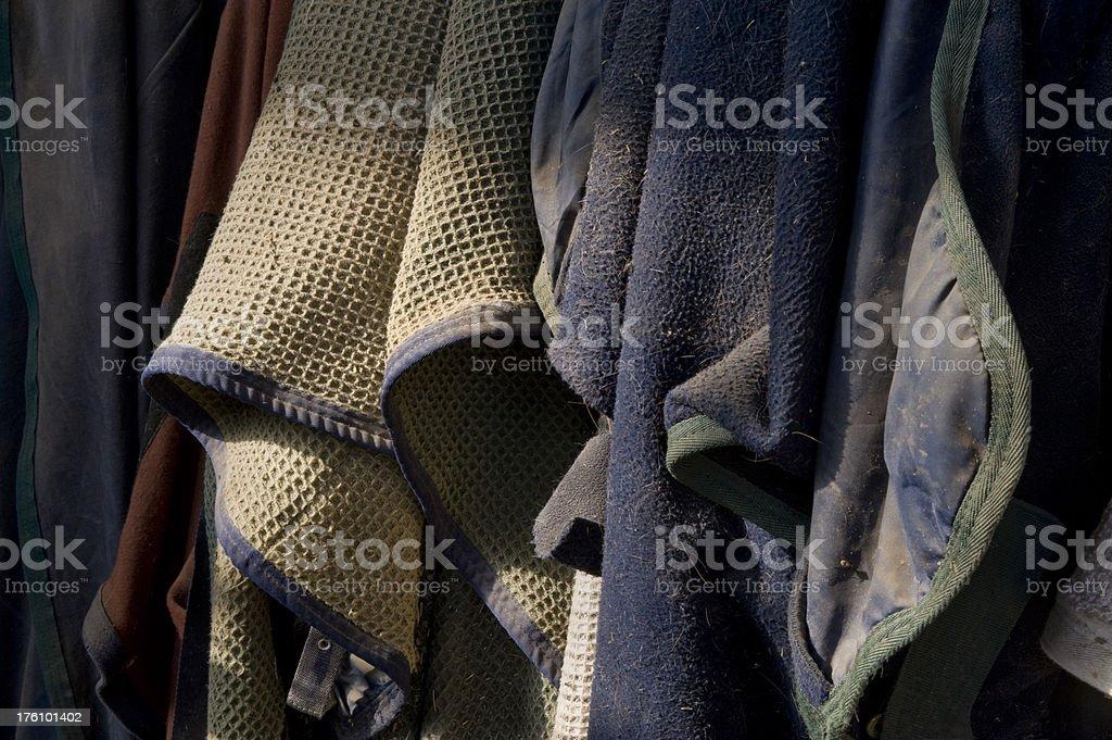 Horse Blankets stock photo