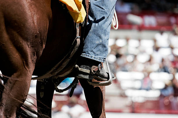 Horse, Boots, & Spurs (shallow focus) stock photo