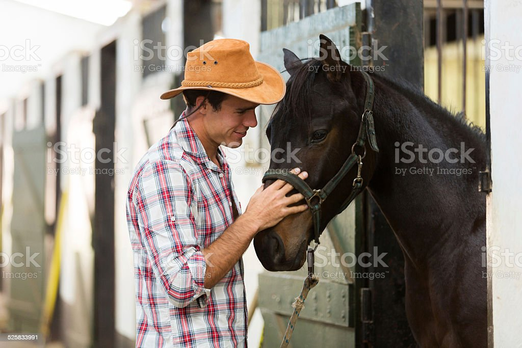 horse breeder comforting a horse stock photo