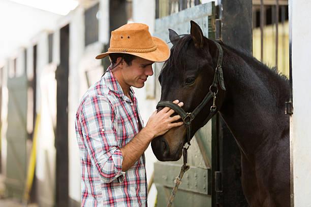 allevatore di cavalli confortevole un cavallo - allevatore foto e immagini stock