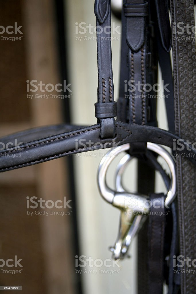 Horse bridle close up... royalty-free stock photo