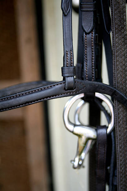 horse bridle close up... - horse bit stock photos and pictures