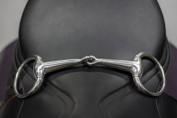 horse bridle, snaffle - horse bit stock photos and pictures