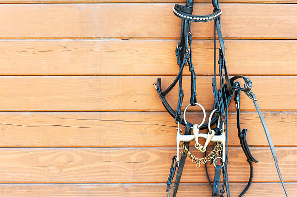 horse bridle with decoration hanging on stable wooden wall. - horse bit stock photos and pictures