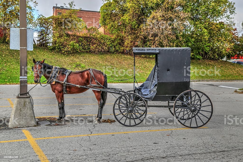 Horse & Buggy stock photo