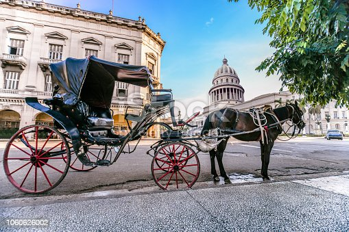 Horse Car Near The El Capitolio In Havana, Cuba