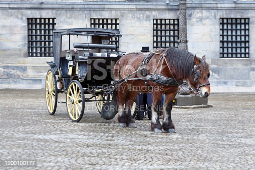 Amsterdam, Netherlands - March 3, 2015: Image of a retro style horse carriage at the Dam Square in Amsterdam.