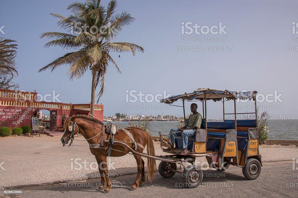 Horse carriage in Saint Louis - foto de stock