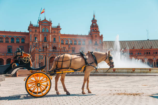 Horse carriage in Seville A horse carriage in Plaza de España, Seville, Spain. seville stock pictures, royalty-free photos & images